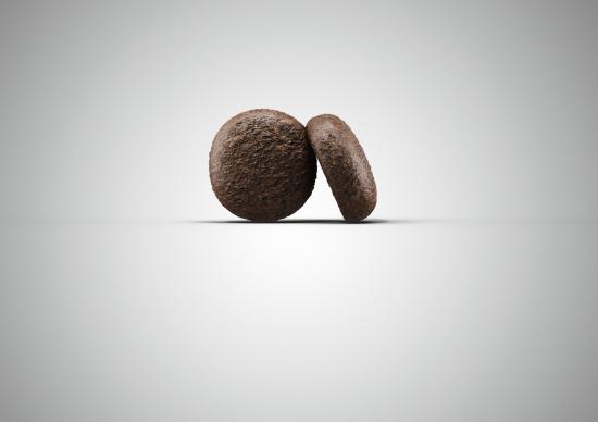 Duck&Potato compoziție