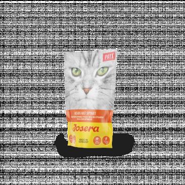 Paté Pui cu spanac